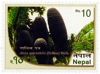 n° 1161 - Timbre NEPAL Poste