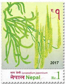n° 1241/1246 - Timbre NEPAL Poste