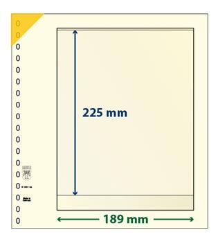 Feuille neutre LINDNER-T : 1 bande-802104 (x10)