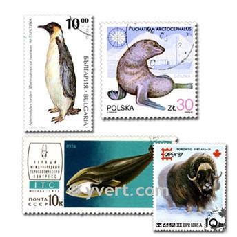 ANIMALES POLARES: lote de 100 sellos
