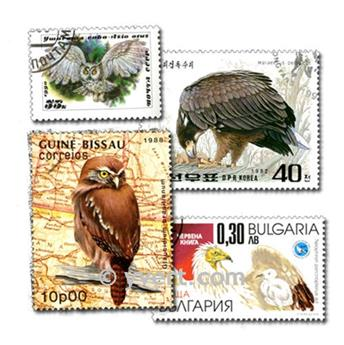 BIRDS OF PREY: envelope of 50 stamps
