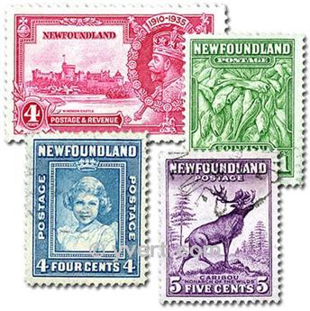 TERRE NEUVE : pochette de 25 timbres