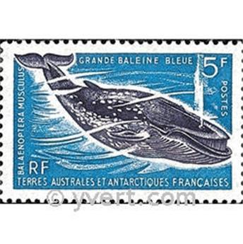 n.o 22 -  Sello Tierras Australes y Antárticas Francesas Correos